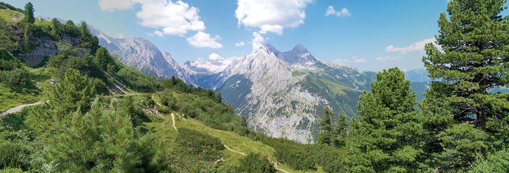 """Die ZIRBE ist die """"Königin der Alpen"""", und ihr Holz hat einen besonderen Einfluss auf uns Menschen. Es fördert sowohl die Belastungs- als auch die Erholungsfähigkeit..."""